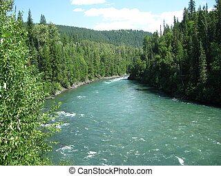 Cariboo River - In the Likely area.