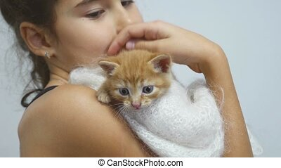 girl petting a small red cat kitten holds - girl petting...
