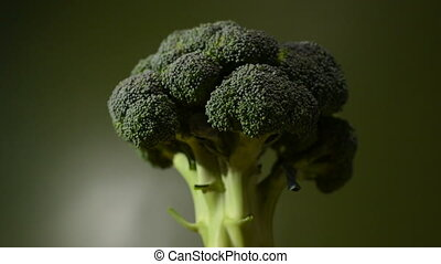 Rotating broccoli on a dark green background