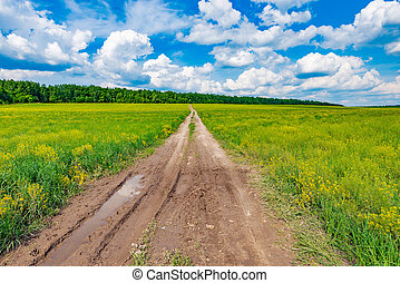 Dirty road on the field. - Dirty road on the field with...