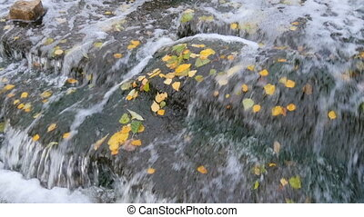 A small waterfall in the park in autumn. Float with yellow...