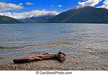 Lago Nahuel Huap - Washed up log at Lago (Lake) Nahuel Huap...