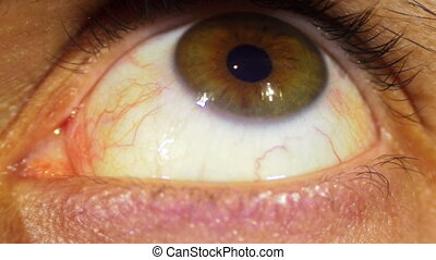 Eye Rotation Of The Eyeball. Close-up of man eyes that...