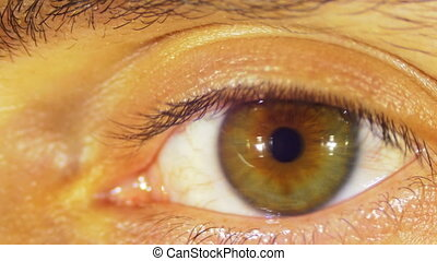 Eye Sight. Human Eye Blinks. Close-up of man eye that blink,...