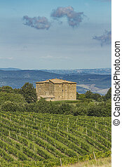 Montalcino - Panoramic view at Val d'Orcia from Montalcino,...