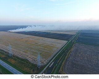 Burning straw in the fields after harvesting wheat crop.