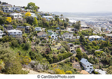 Napier Residential District - The view of Napier town...