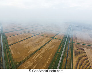 Burning straw in the fields after harvesting wheat crop. The...