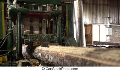 Worker cleans sawdust from log during sawing - View of...