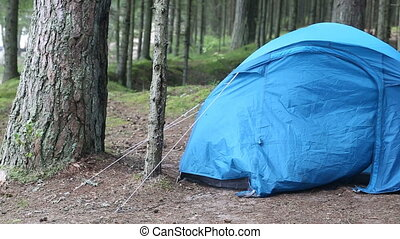 Tourist tent in the woods