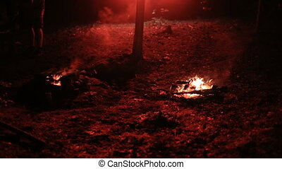 Night bonfire in the woods