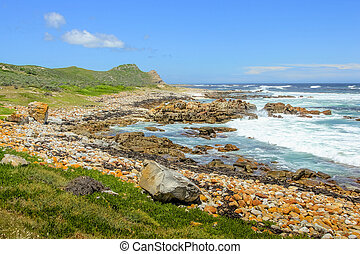 Cape of Good Hope - Pebble beach in the spectacular...