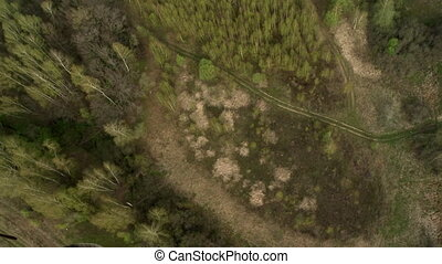 Forest landscape aerial view. - Deep forest and road from...