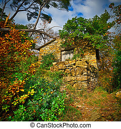 fairy small stone house in the forest