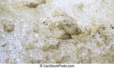 River foam sways