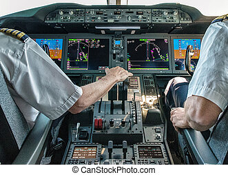 Pilot and copilot in commercial plane
