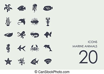 Set of marine animals icons - marine animals vector set of...