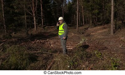Lumberjack in forest clearing