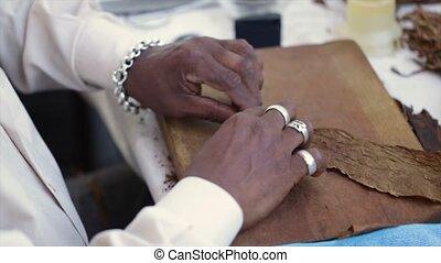 black man in a white shirt turns cigarillos, shot close-up