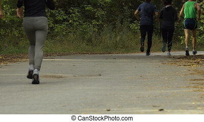 three young women runners sports in autumn forest. physical...
