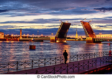 Panoramic view over Neva river in white night time, St...