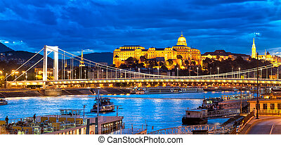 Buda Castle over Danube river, Budapest, Hungary - Panoramic...