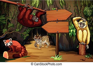 Wild animals in the cave