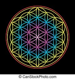 Flower Of Life Colorful On Black Background