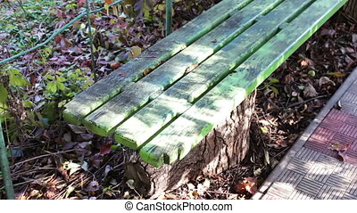 Autumn scene with a green bench and leaves falling down -...