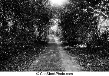 Path to Oughterard - BW - The rural road leading to...