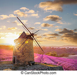 Windmill with lavender field against colorful sunset in...