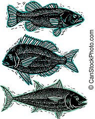 Set of vector drawn fishes, different underwater species....