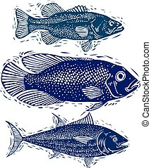 Set of vector fishes, different underwater species. Organic...