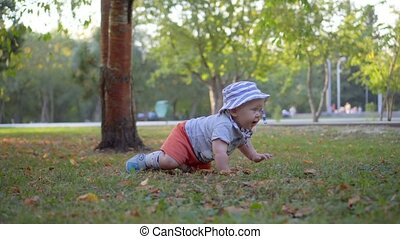 Baby in panama crawling on the grass in the park. The camera...