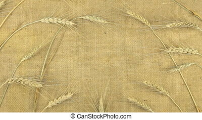 Approximation, zoom of wheat ears lying on sackcloth