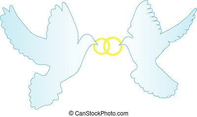 doves rings - vecor wedding background doves with rings