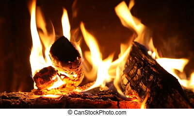 Logs burning on fire - logs burning on open fire