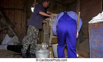 Two men sifting grain with vintage machine in rural farm barn