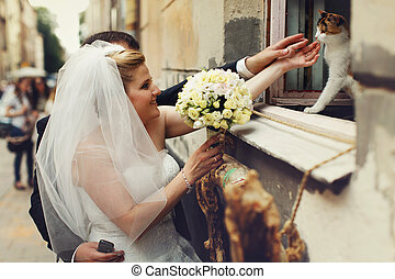 Bride and groom plays with a cat who seats on the windowsill