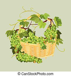 Bunches of fresh grapes in the basket isolated on beige background. Element for restaurant, bar, cafe menu or label.