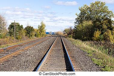 Train tracks edged by trees. - Train tracks edged by trees...
