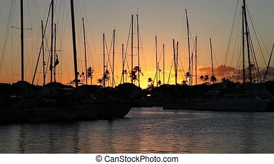 Honolulu Harbor at sunset - Beautiful view of Ala Wai Harbor...