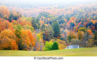 Corinth Vermont - Scenic landscape near Corinth Vermont