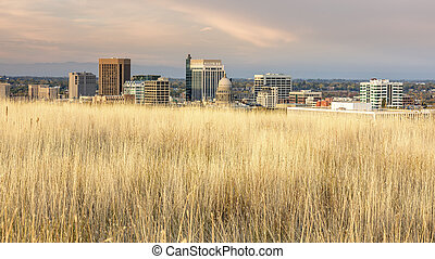 Unique skyline of Boise Idaho with grasses - Foothills...