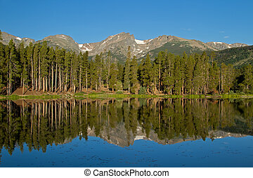 Sprague Lake Reflection - Hallet Peak reflects in the still...