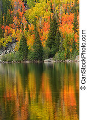Fall Color on Bear Lake in Rocky Mountain National Park -...