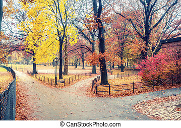NY Central park at rainy day - Central park at rainy day,...