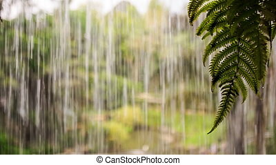 Water Drops Streams Flow as Wall for Heavy Shower - closeup...