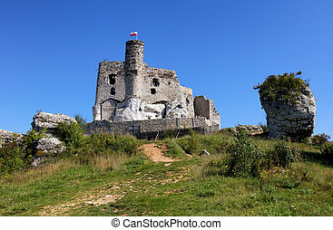 Ruins of the castle in Mirow