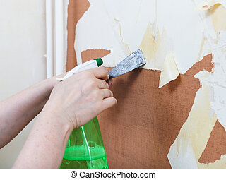 Removing of old wallpaper with chemical stripper -...